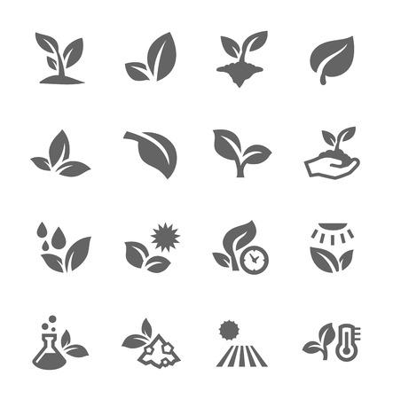 plante: Bien organisée et posé. Entièrement éditable. Peut être personnalisé et redimensionnée. Illustration