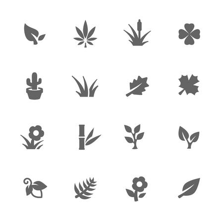 crecimiento planta: Simples de plantas relacionadas iconos vectoriales para su diseño.