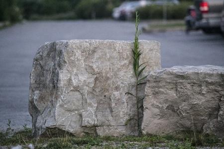 Rock Reklamní fotografie - 21304177