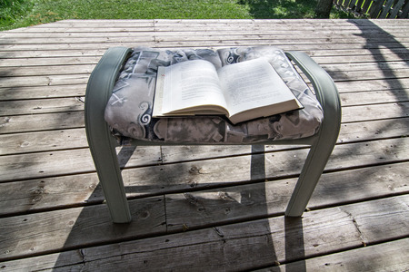 the footstool: Book