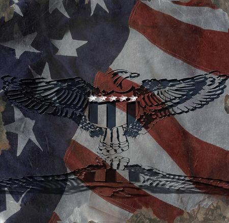 American Eagle Banco de Imagens