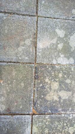 stepping stone: Path