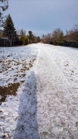 suburbia: Path in the snow