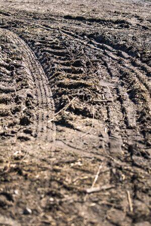 mud snow: Tire tracks