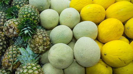 Melons: pineapple, honey-dew, squash