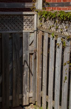 Gate Imagens - 101804708