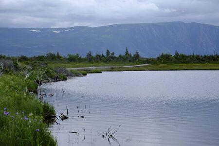 gros morne national park Banque d'images - 131488357