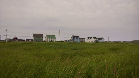 Rural homes in a pastoral setting