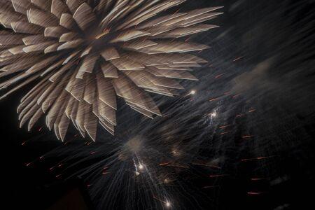 Night sky lit with fireworks
