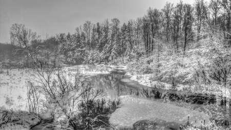 A winter snow on branch scene