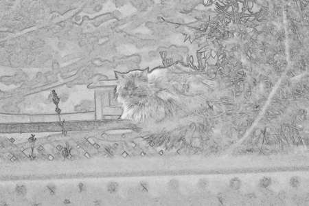 A sketch of a cat on a fence