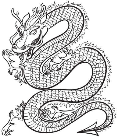 year of the dragon: Great Dragon b&w Illustration