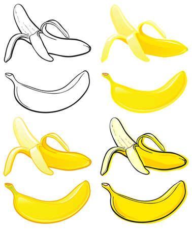 banane: Banana Illustration