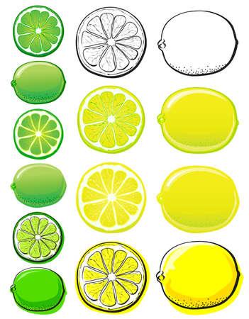 lemon lime: Lemon & Lime