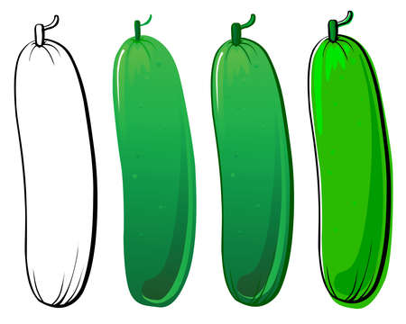 Cucumber set. Each in separated layer.  Vector