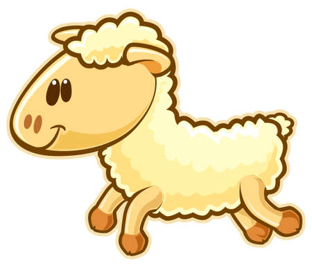 Sheep.  photo