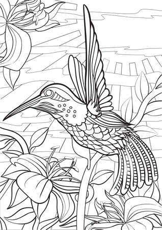 dessin au trait: Adulte livre de coloriage illustration. Tattoo set: Hummingbird. illustration. Illustration