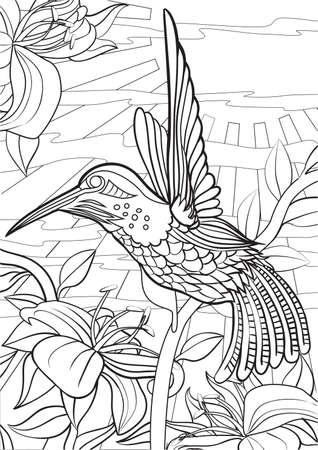 Adult Coloring book  illustration. Tattoo set: Hummingbird. illustration.