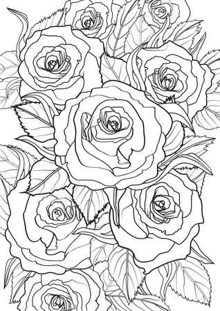 dibujos para colorear: Adulto ilustración de libros para colorear. conjunto tatuaje: Rosas. ilustración.