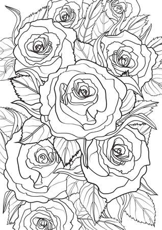 Adult Coloring book  illustration. Tattoo set: Roses. illustration. Illustration