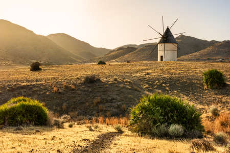 Windmill at sunset between the hills. Light and golden fields in southern Spain. Typical landscape of Cabo de Gata in Almer?a.