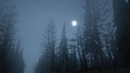 3d render of mystical forest at night in fog with moon in the sky
