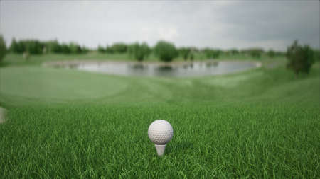 3d render golf ball with a club on the field side view