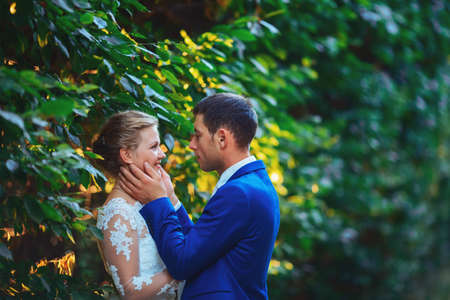Wonderful groom and bride in summer forest