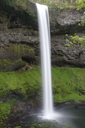 silver state: Beautiful South Falls in Silver Falls State Park, Oregon