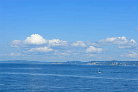 puget: Sailboat in Puget Sound on a beautiful summer day