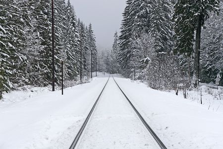 forest railway: Snow covered railroad tracks on a sotrmy winter day