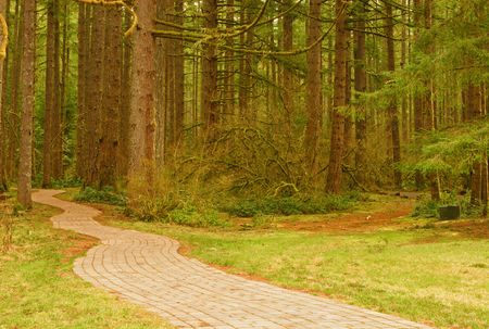 brick road: Pathway into the forest at Silver Falls State Park, Oregon, USA Stock Photo