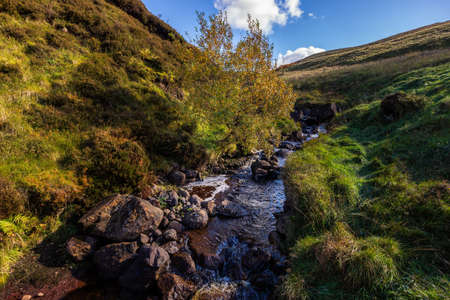 Stream with tree in the centre, meadows and hills on sides, beautiful autumn colours with blue sky and puffy clouds