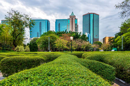 Green hedges at Kowloon Park with skyscrapers in background. Kowloon Park is a large public park in Tsim Sha Tsui, Hong Kong