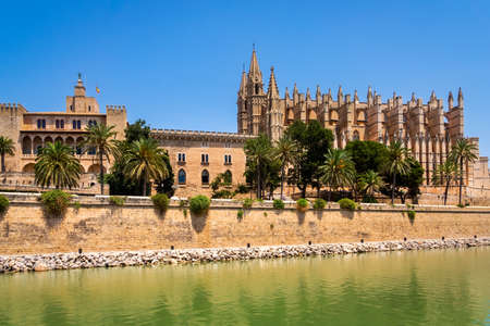 The Cathedral of Santa Maria of Palma in Mallorca with pond and green palm trees in front, Balearic Islands, Spain