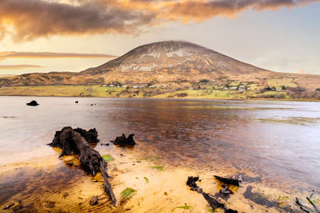 Twisted tree trunks submerged in Dunlewy lake with view at Errigal mountain in dramatic sunset, County Donegal, Ireland Reklamní fotografie
