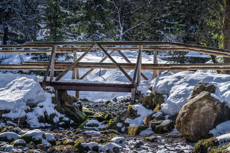 Wooden foot bridge over stream in pine forest covered in snow at foothill of Kasprowy Wierch mountain in Tatra Mountains, Poland