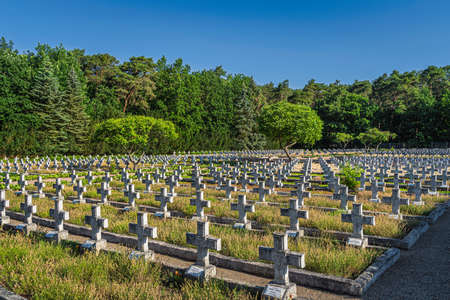 Stare Lysogorki, Poland, June 2019 Rows of graves in military cemetery for fallen soldiers from 1st Polish Army which participated in the crossing of the Oder River as part of the Berlin operation