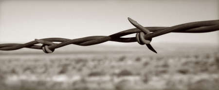 Barbed Wire against a stark southwestern background photo