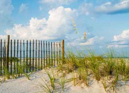 A sand dune with sea grass along a sand fence on the beach.