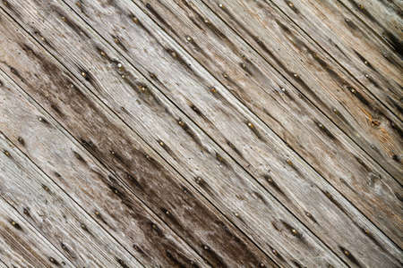 Rustic wood with old nails Stock Photo - 18025870