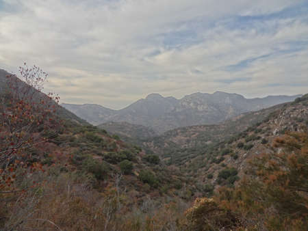Sequoia National Park Mineral King  Stock fotó