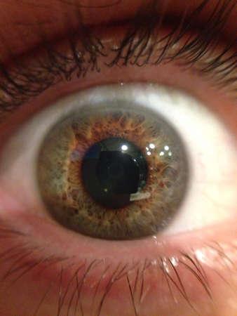 hazel eyes: Ojos casta�os magn�ficos