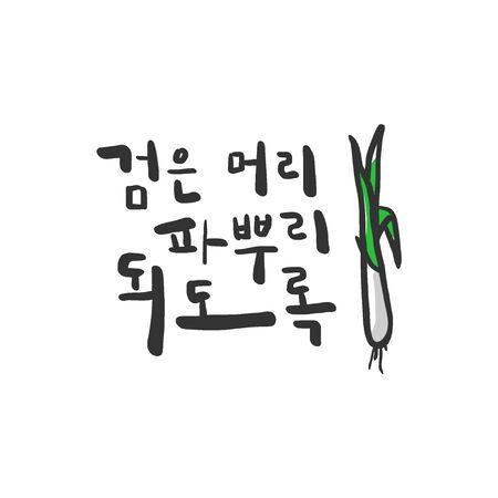 illust: Calligraphykorean message Illustration