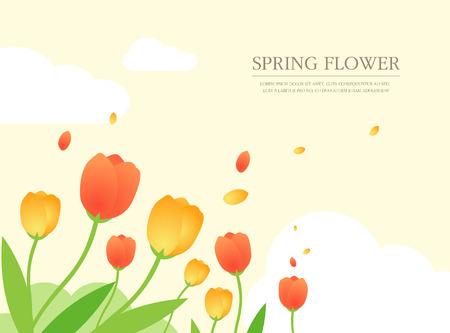 field flowers: spring illustration Illustration