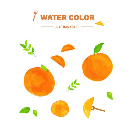 paint vector layer: watercolor fruit layer