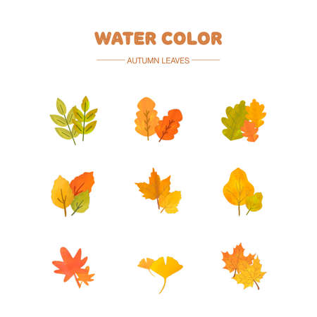 paint vector layer: watercolor leaf