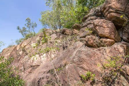 La pierre dans le parc Banque d'images - 98268341