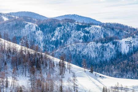 Snow mountain and forest, Altai Mountain