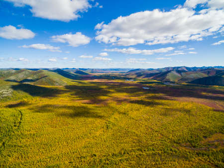 Aerial view of forest in the far East, Russia Foto de archivo